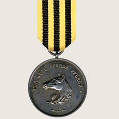 Medal for Good Horse Care main