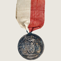 Joint War Commemorative Medal of Hanseatic Legion main