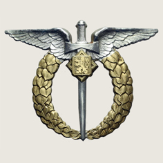 Military Observer Badge main