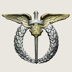 Military Pilot badge main