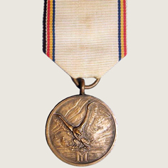 Military Medal Winter Campaign main
