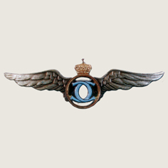 Romania Civil Pilot badge main
