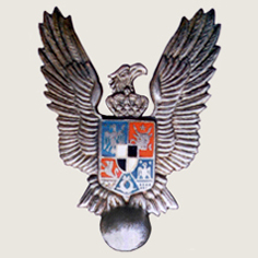 Romania Military Pilot badge main