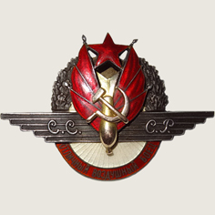 Excellent Air Fighter Badge main
